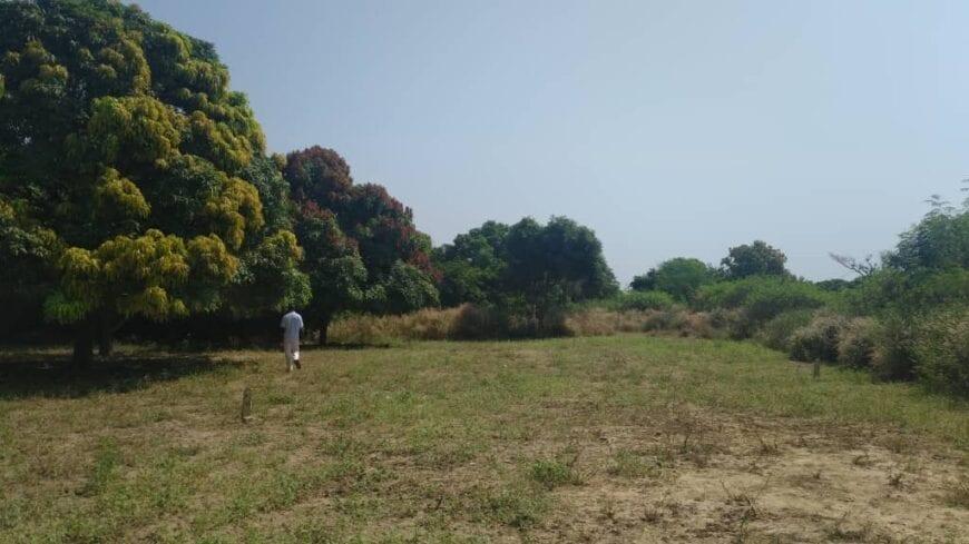 terrain-225-metre-Carre-Saly-1