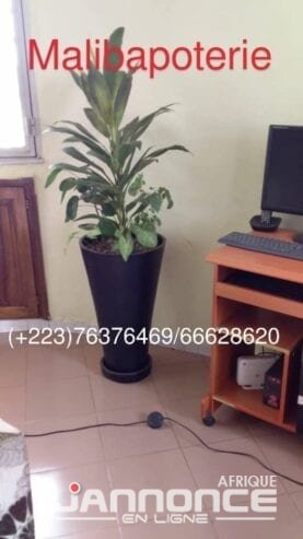 IMG-20181128-WA0004_1-1